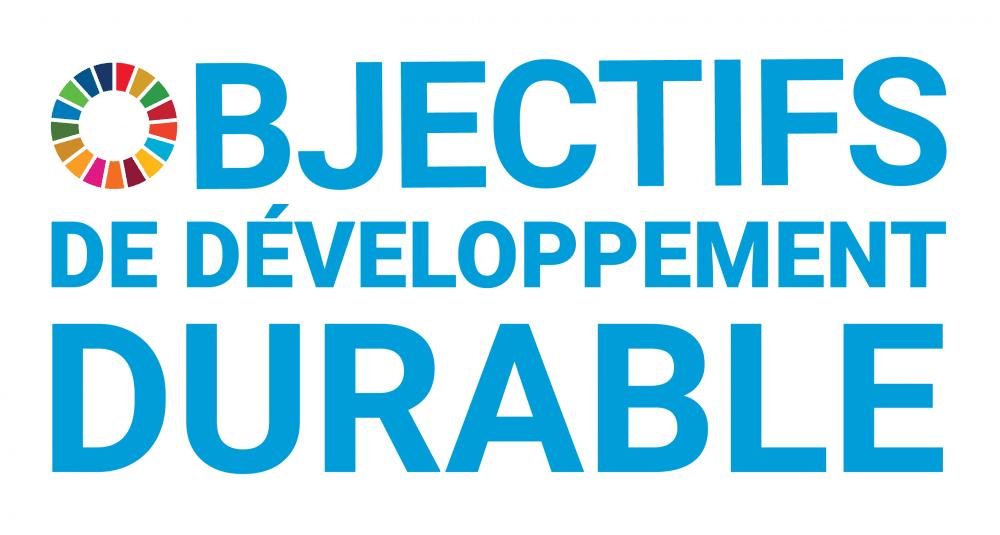 Logo Objectifs de développement durable