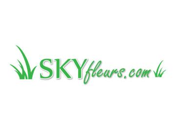 Logo boutique Skyfleurs