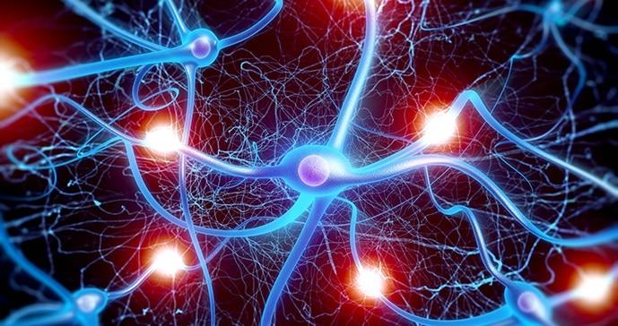 7000 neurologues se donnent rendez-vous au Palais des congrès de Montréal en 2023