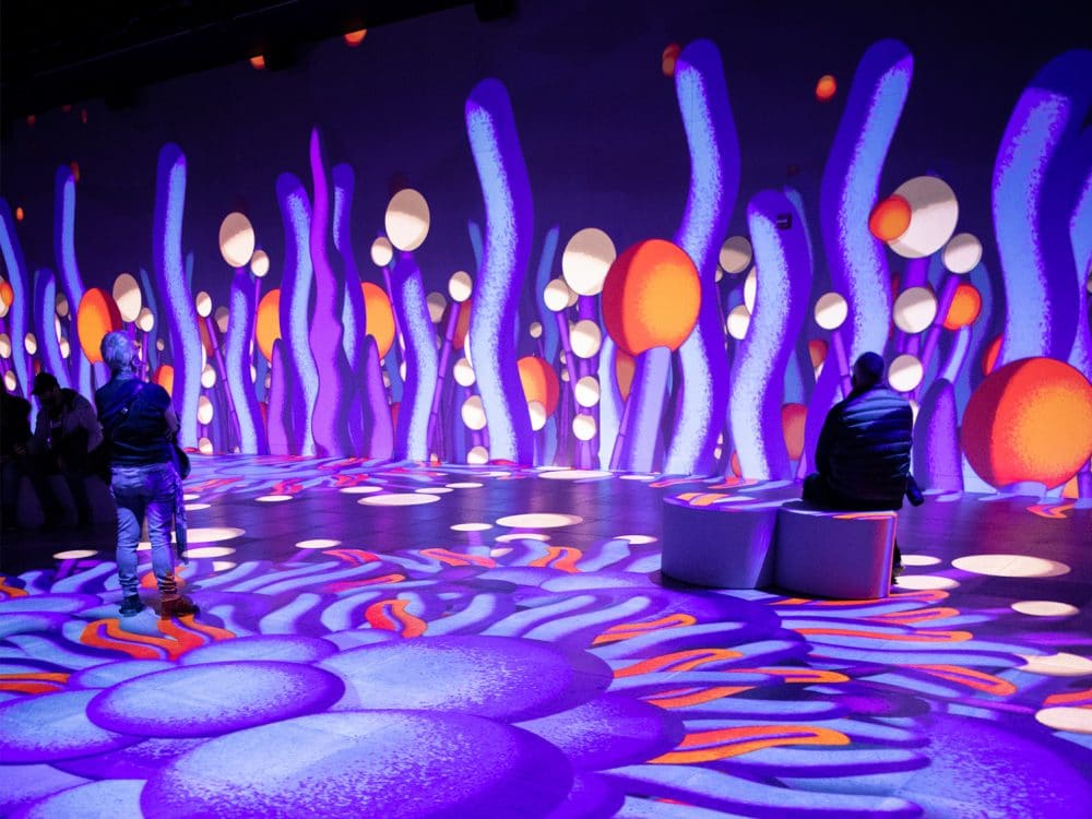 Oasis Palais des congrès Montréal